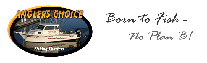 Anglers Choice Fishing Charters