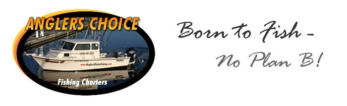 Anglers Choice Fishing Charters
